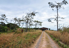Rural road in Kampot, Cambodia Royalty Free Stock Photos