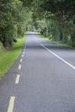 Rural Road, Killarney Royalty Free Stock Images