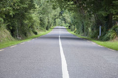 Rural Road in Killarney Stock Images