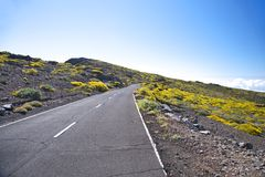 Rural road at La Palma Royalty Free Stock Image
