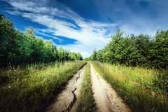 Rural road landscape Stock Image