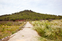Rural road leading to hill, Valencia region, Spain Stock Photography