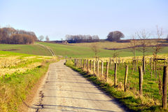 Rural road in Limburg Stock Images