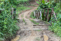 The rural road in maehongson country ,thailand Stock Photography