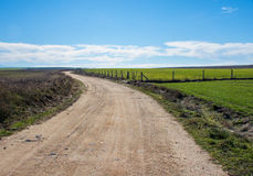 Rural road in the meadow Stock Photography