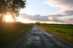Rural road in meadows sunset as a background Stock Photography