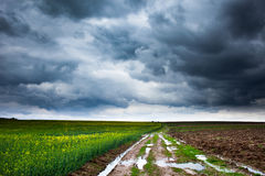 Rural road and moody skies Royalty Free Stock Photos