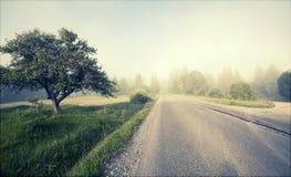 Rural road in morning fog Royalty Free Stock Image