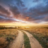 Rural road on the mountain hill. Beautiful natural landscape stock photography