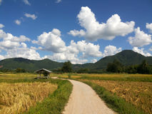 Rural road in the mountain under blue sky with clouds background ,way in the farm Stock Photography