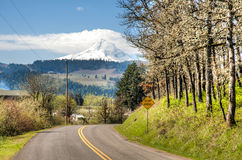 Rural road, Hood River Valley, Oregon Royalty Free Stock Photos