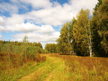 Russian nature at the end of the summer Royalty Free Stock Photo