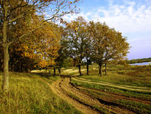 Rural road near the forest lake Stock Photography