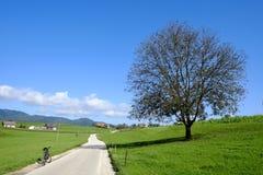 Rural road. Near Skofja loka, slovenia Royalty Free Stock Images