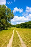 Rural road at nice summer day Stock Images