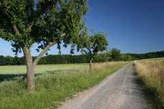 Rural road in the north of Hesse Stock Photos