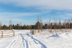Rural road on the outskirts of the village Stock Photography