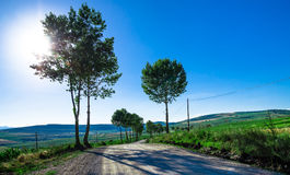 Rural road over the hills Stock Photography