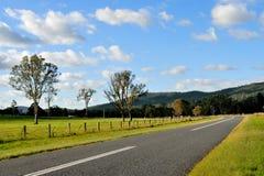 Rural road pass through grassland Stock Photo