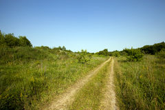 The rural road. Passing across the field and the wood Royalty Free Stock Photos
