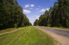 Rural road passing through the forest scenic Stock Images