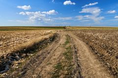 Agricultural road through fields. Rural road through ploughed fields and corn under blue sky with clouds Royalty Free Stock Image
