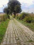 Rural road in Polish countryside Stock Photos
