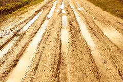 Rural road after the rain Royalty Free Stock Image
