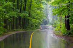 Rural Road on a Rainy Day Royalty Free Stock Image