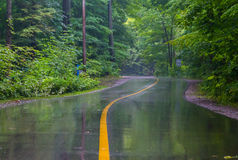 Rural Road on a Rainy Day Stock Images