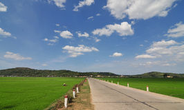 Rural road with the rice field in Hoian, Vietnam Stock Photo