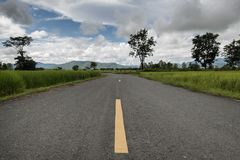Rural road with rice paddies in Phayao, Thailand. With backdrop as mountains Stock Photo
