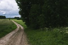 Rural Road. Rural road through agricultural fields during a daytime. Retro. And vintage look Royalty Free Stock Images