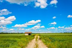 Rural road and shed in italian Po valley Royalty Free Stock Photo