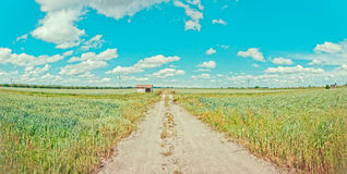 Rural road and shed in italian Po valley Stock Photography