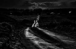 Rural road shine in dark. Rural road shine sun after rain in black and white Royalty Free Stock Photos
