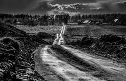 Rural road shine. Sun after rain in black and white Stock Photography