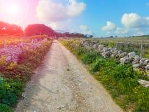 Rural road in the Sicilian island of Favignana Stock Photo