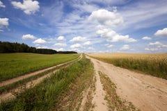 The rural road Stock Photos