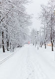 Rural road in the snow at day Royalty Free Stock Images