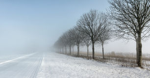 Rural road with snow and heavy fog and low visibility Royalty Free Stock Photo