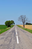 Rural road. In the south of Russia Stock Photography