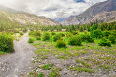 Rural road in stone valley Stock Images