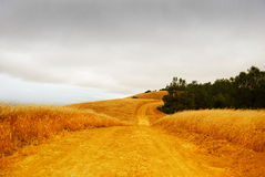 Rural Road with Stormy Sky Stock Photography