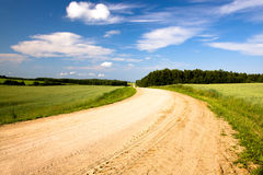 Rural road (summer) Royalty Free Stock Image