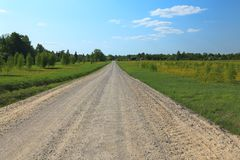 Rural road on sunny day. Stock Photos