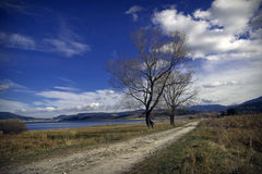 Rural road on sunny day. Royalty Free Stock Photo