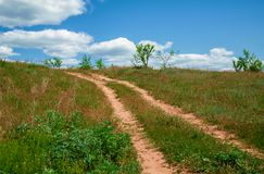 Rural road on sunny day Royalty Free Stock Photography