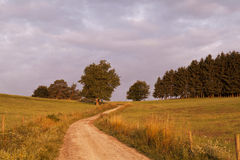 Rural road at sunrise Stock Photo
