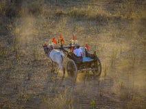 Rural road at sunset in Bagan, Myanmar Royalty Free Stock Image